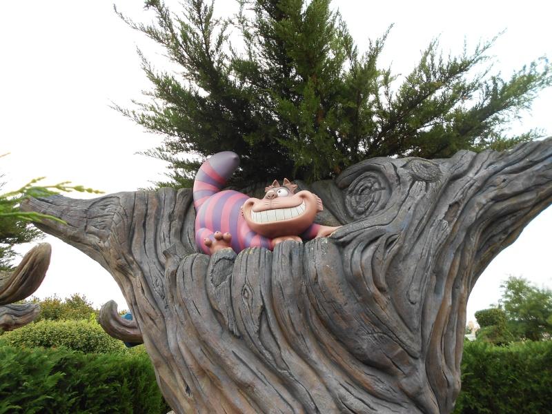 [TR] Séjour surprise pour les 10 ans de Chloé ! Du 13 au 15 Octobre 13 au Sequoia Lodge (FINI) - Page 2 Dscn0139