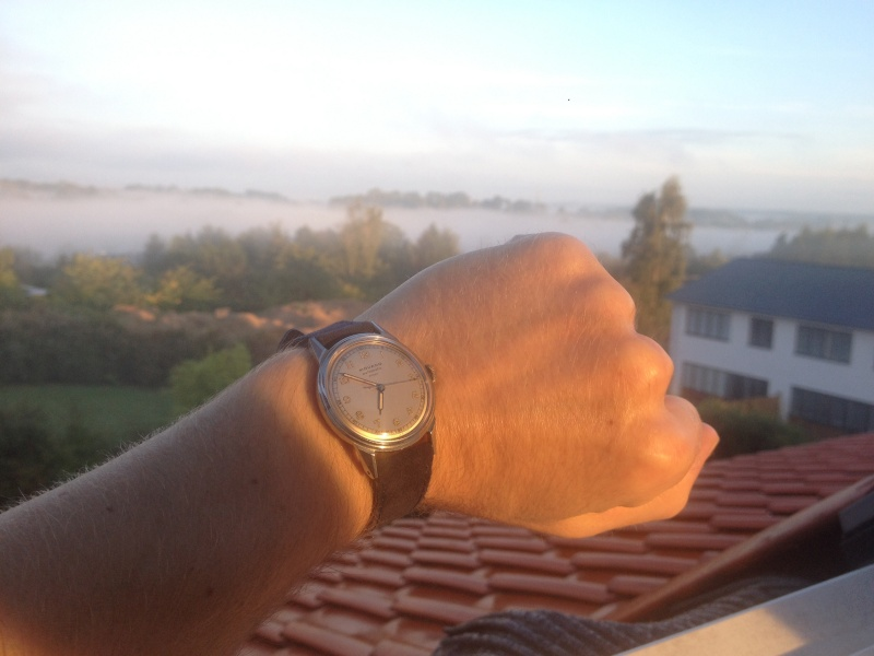 La montre du vendredi 24 octobre 2014 Wd_00110