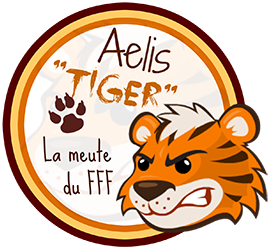 Conférences de Frenchnerd/Frenchball à Geekopolis 2015 Badge210