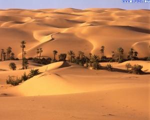 *** Sperem *** 8th sezione _ - Pagina 3 Desert10