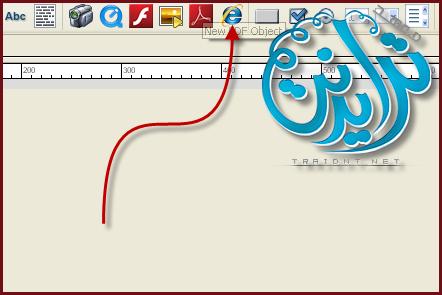 كيفية اضافة صفحة انترنت داخل الاسطوانة AutoPlay Media Studio V8.0.7.0 1101