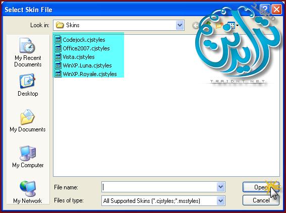 كيفية إضافة Skin للمشروع في AutoPlay Media Studio V8.0.7.0 1106