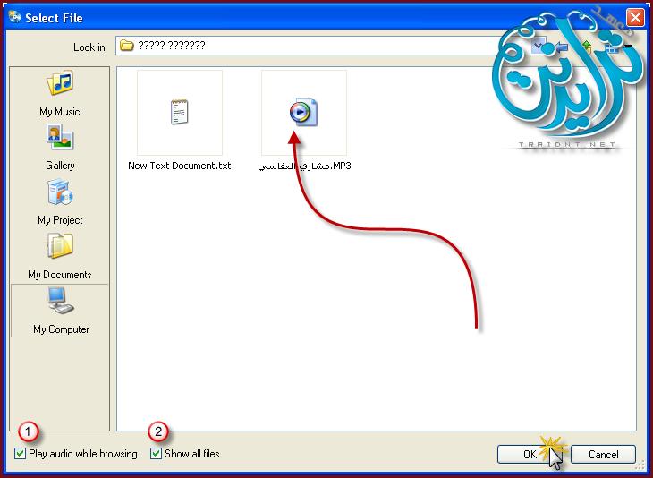 كيفية عمل خلفية صوتية والتحكم بها بزر AutoPlay Media Studio V8.0.7.0 148