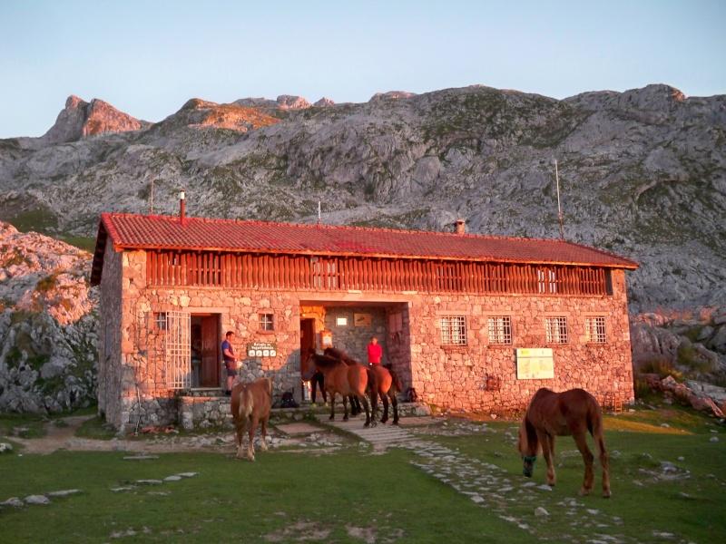 Montañismo: 22-27 de julio 2014 - Picos de Europa  100_8617