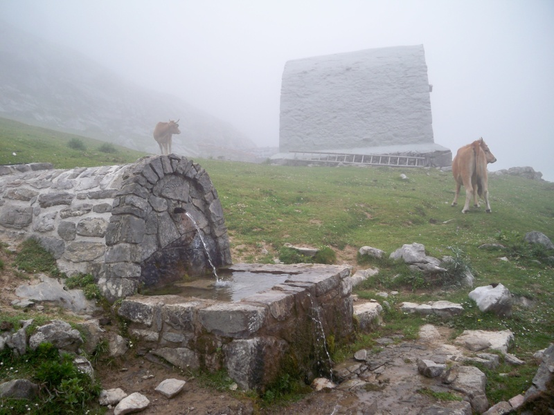 Montañismo: 22-27 de julio 2014 - Picos de Europa  100_8710