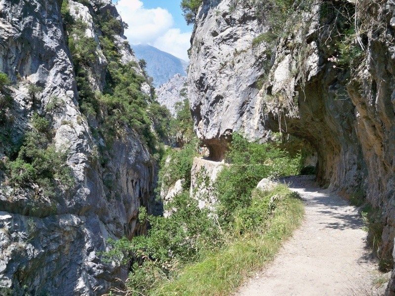 Montañismo: 22-27 de julio 2014 - Picos de Europa  100_8719