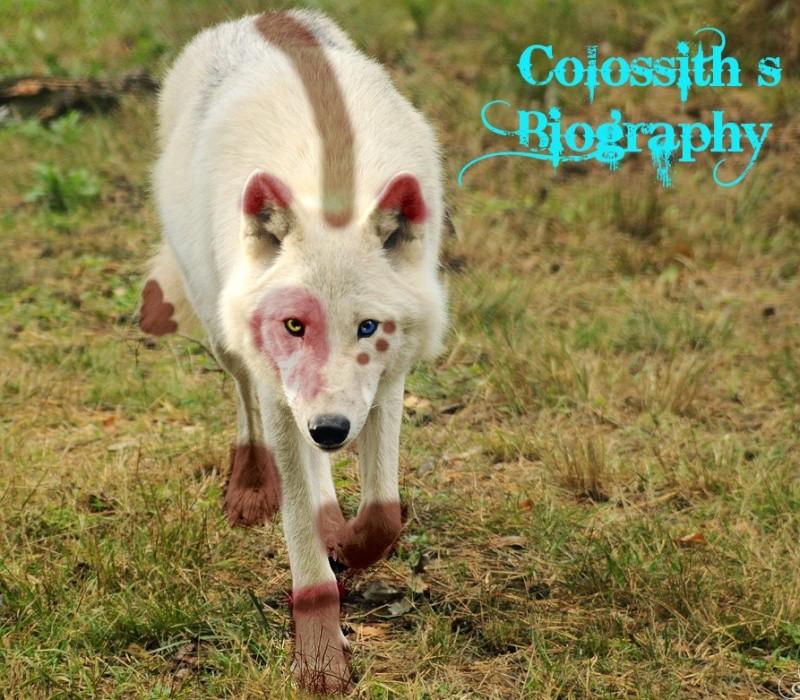 Colossith, the unforgiven wolf Bio110