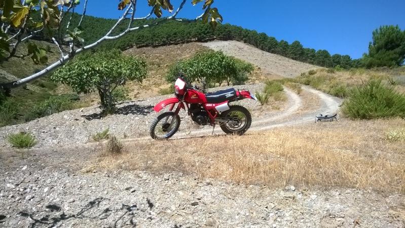Andalucia II, le retour Wp_20110