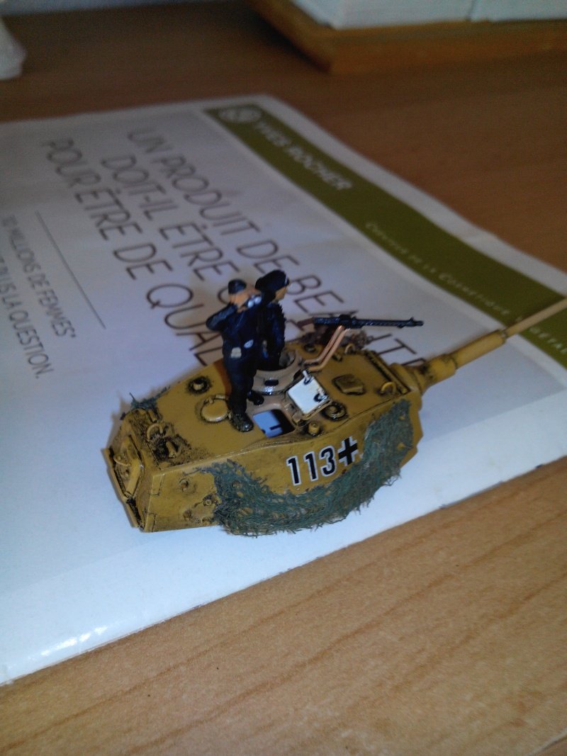 char tigre WWII.kit fujimi au 1/72. Img_2472