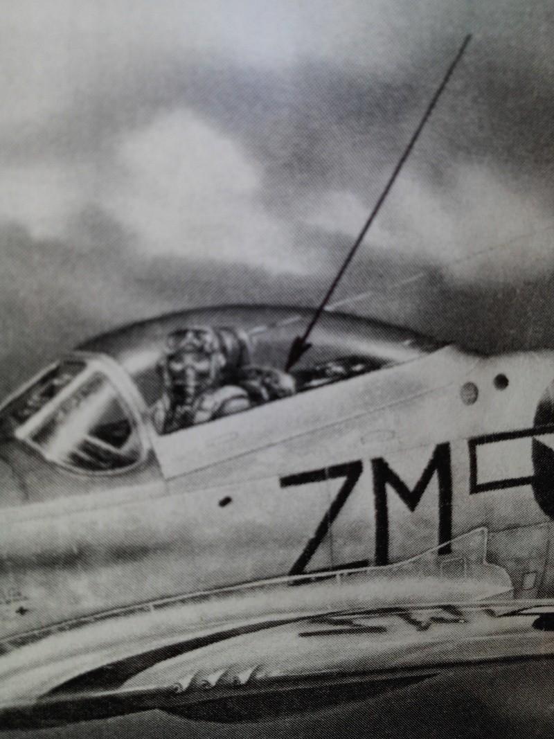 Heller P-51D mustang 1/72 Img_2842