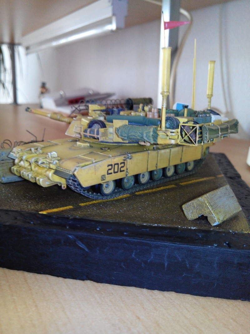 char lourd us.abrams M1 mine roller.1/72 trumpeter. - Page 6 Img_2988
