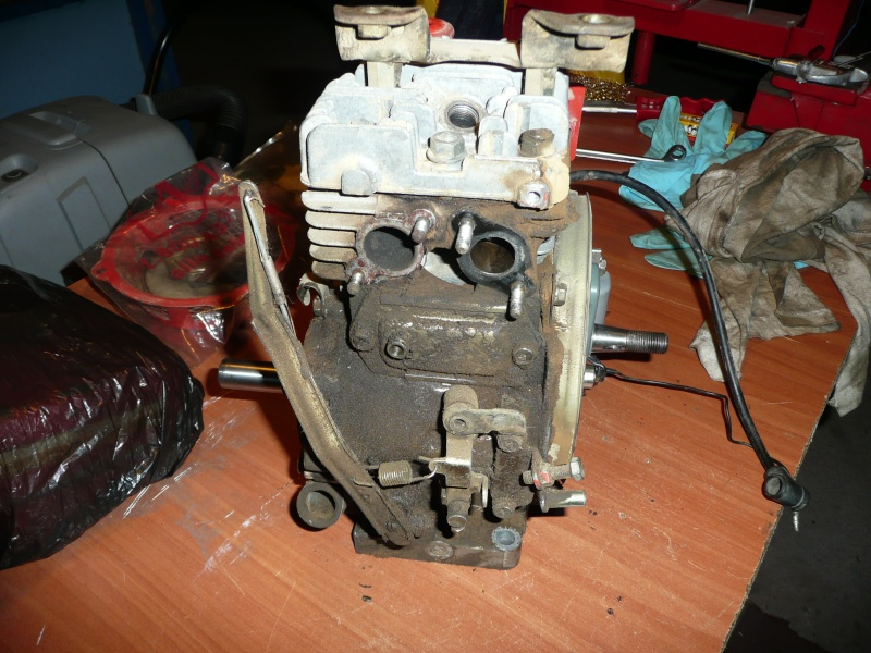 restauration motobineuse solo ihi ged13r-2 P1130014