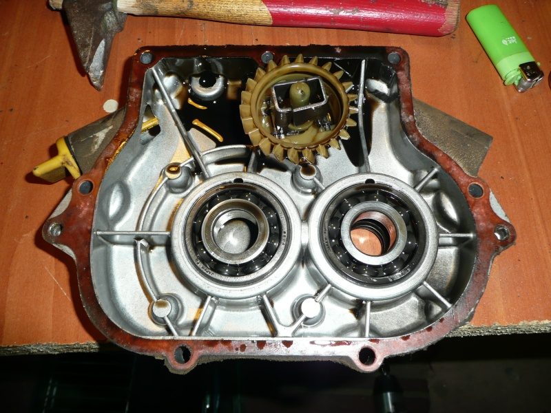 restauration motobineuse solo ihi ged13r-2 P1130023