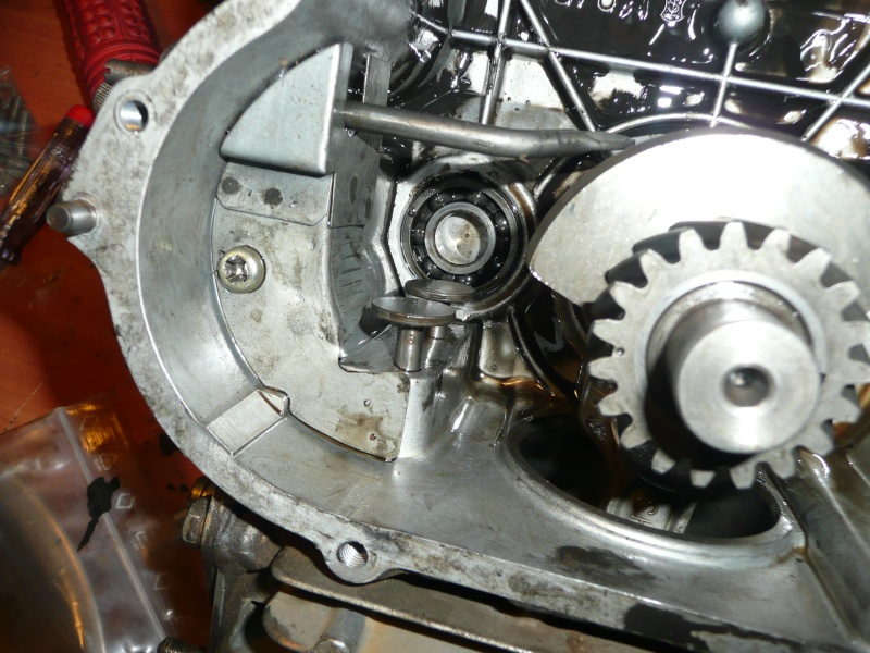 restauration motobineuse solo ihi ged13r-2 P1130026
