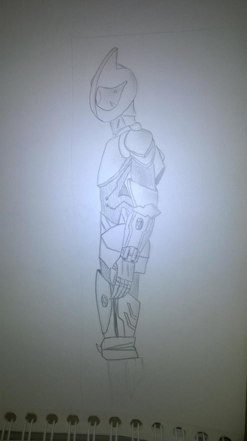 Ma galerie (niveau amateur) - Page 4 Wp_20110