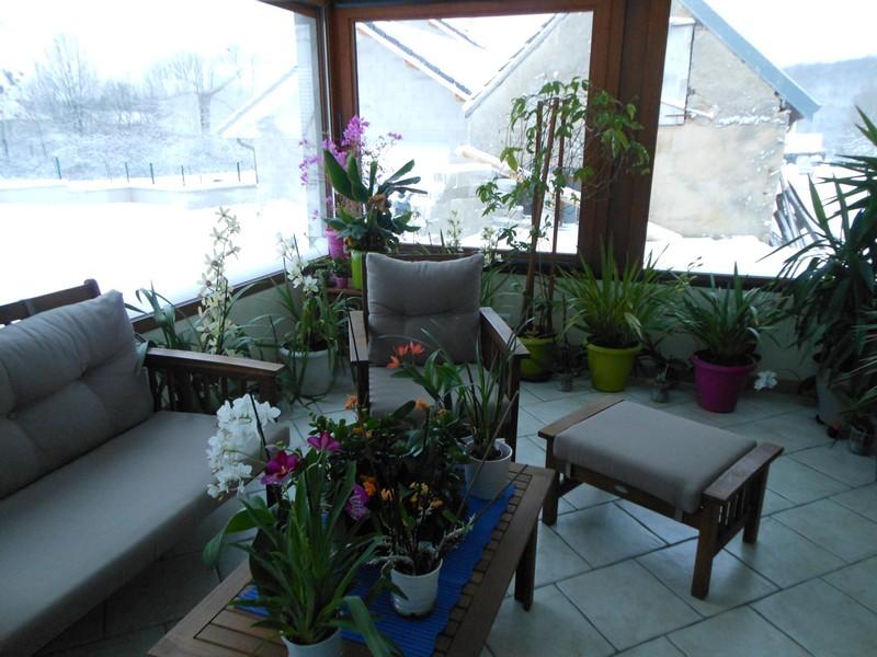 Les orchidées de nounoucaro MAJ 08/05/14 - Page 4 Verand10
