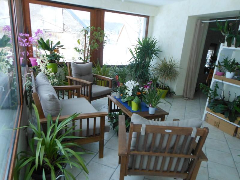 Les orchidées de nounoucaro MAJ 08/05/14 - Page 4 Verand12
