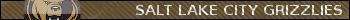 WSHL Salt_l10