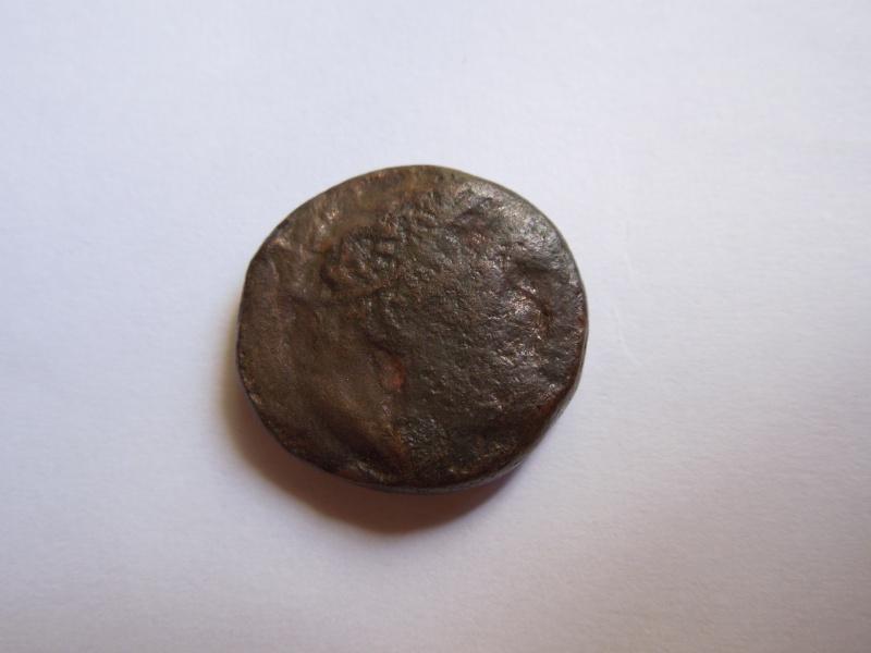 Monnaie ptolémaïque Egypte Lagide Dscn3112