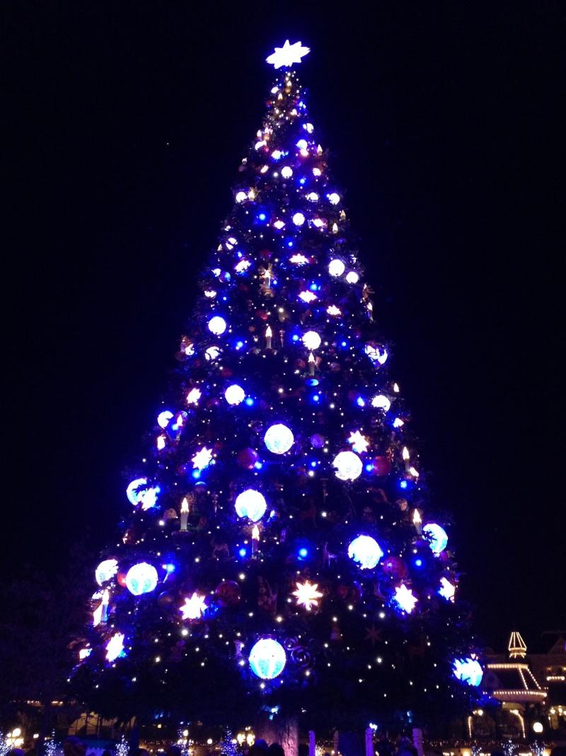 Séjour au Sequoia Lodge du 29 Décembre 2013 au 3 Janvier 2014 - Réveillon à Disneyland Paris !  Terminé le 12 Novembre! Img_3011