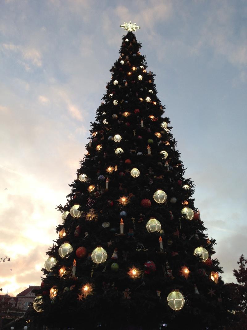 Séjour au Sequoia Lodge du 29 Décembre 2013 au 3 Janvier 2014 - Réveillon à Disneyland Paris !  Terminé le 12 Novembre! Img_3033