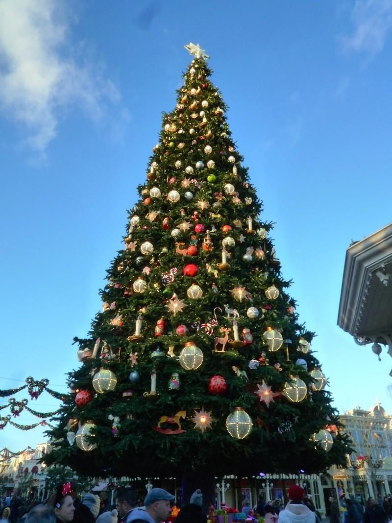 Séjour au Sequoia Lodge du 29 Décembre 2013 au 3 Janvier 2014 - Réveillon à Disneyland Paris !  Terminé le 12 Novembre! P1020411