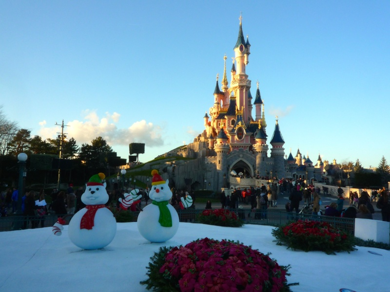 Séjour au Sequoia Lodge du 29 Décembre 2013 au 3 Janvier 2014 - Réveillon à Disneyland Paris !  Terminé le 12 Novembre! P1020412