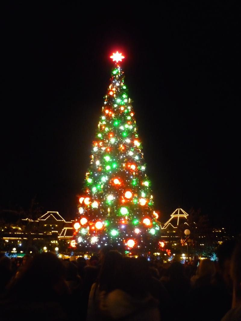 Séjour au Sequoia Lodge du 29 Décembre 2013 au 3 Janvier 2014 - Réveillon à Disneyland Paris !  Terminé le 12 Novembre! P1070917