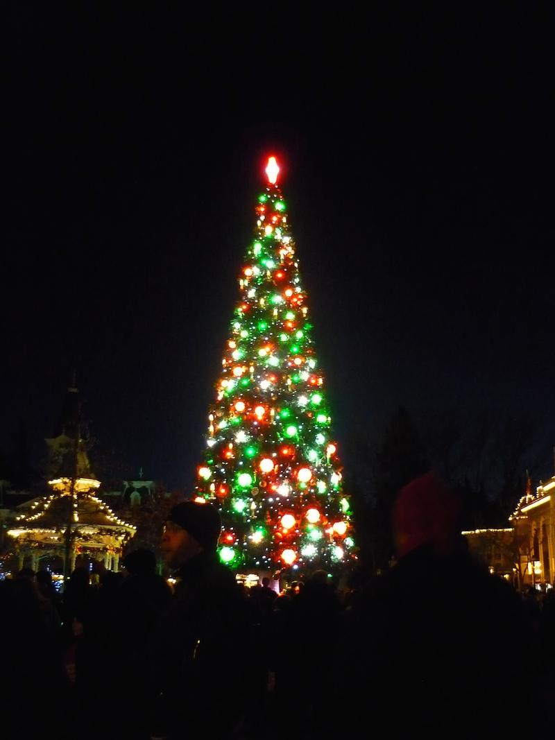 Séjour au Sequoia Lodge du 29 Décembre 2013 au 3 Janvier 2014 - Réveillon à Disneyland Paris !  Terminé le 12 Novembre! - Page 5 P1080720