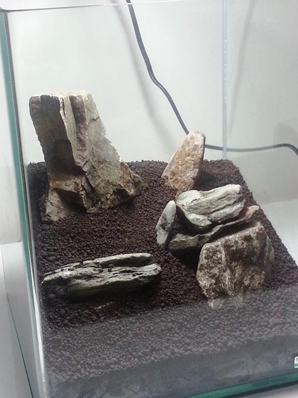 NanoCube 20L [MicK38450] 20140812