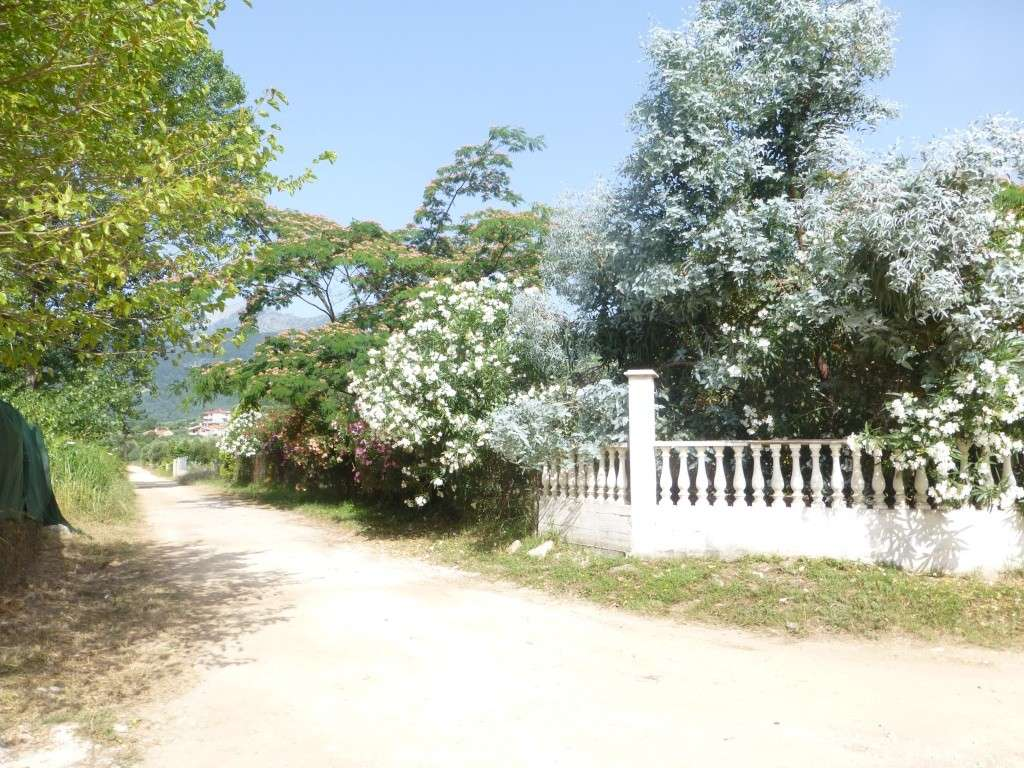 Greece, Island of Thassos, 2014 Part 1 00413