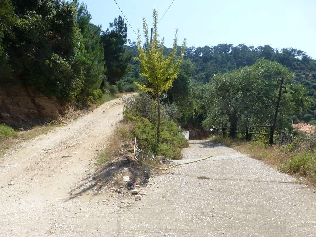Greece, Island of Thassos, 2014 Part 1 01811