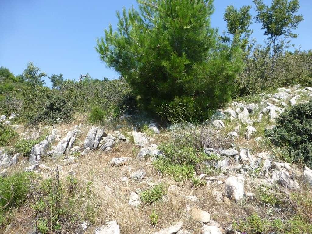 Greece, Island of Thassos, 2014 Part 1 04411