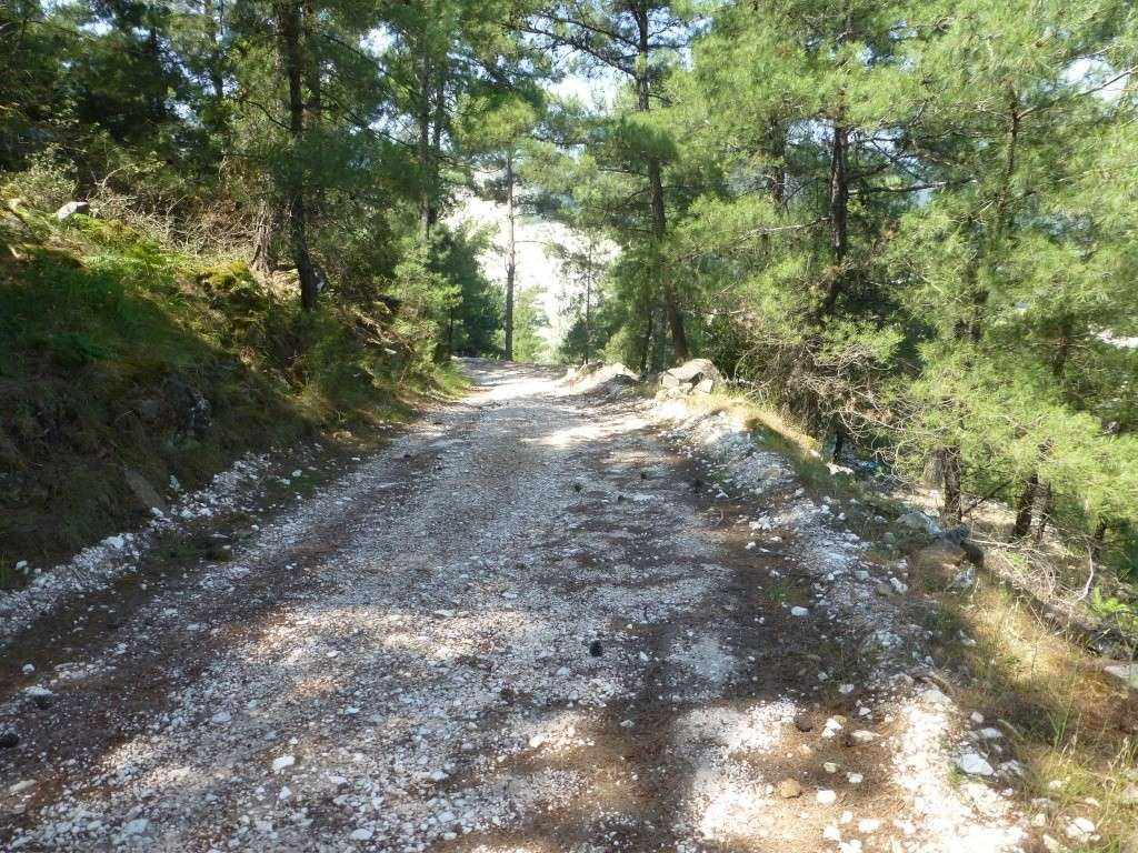 Greece, Island of Thassos, 2014 Part 1 06010