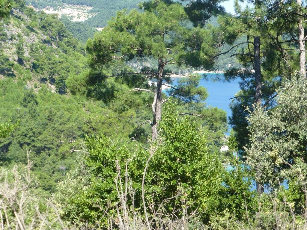 Greece, Island of Thassos, 2014 Part 1 07113