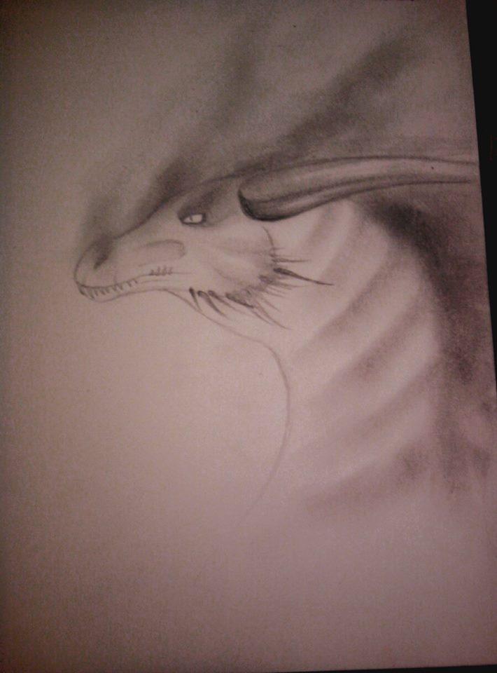 Nitara's Dragons  10296910