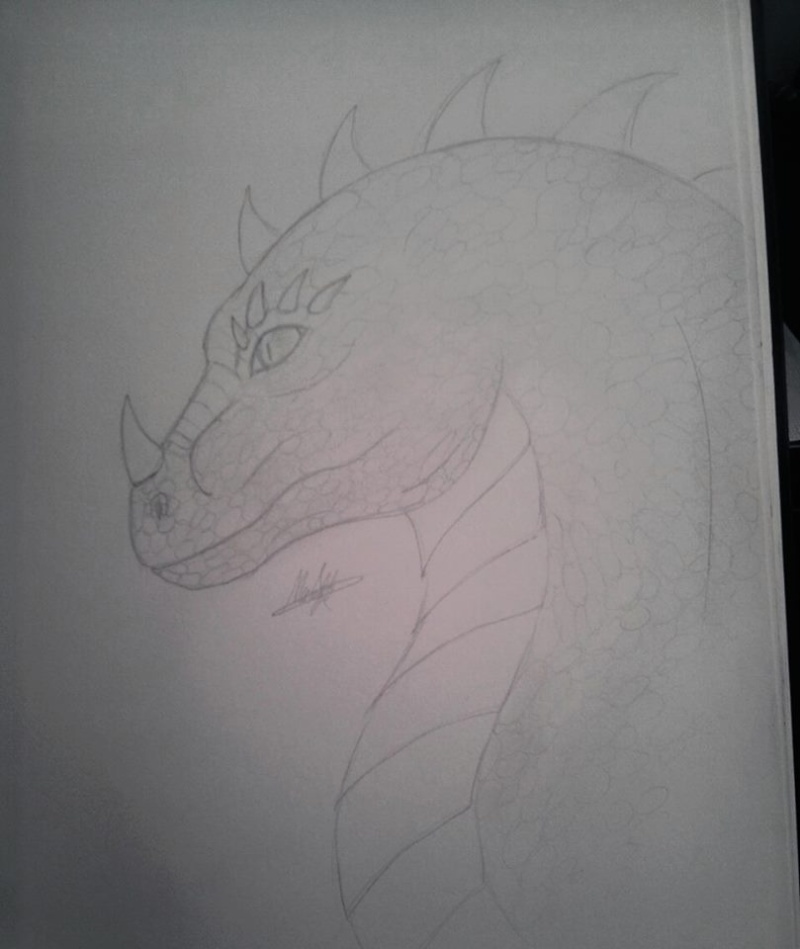 Nitara's Dragons  10301210