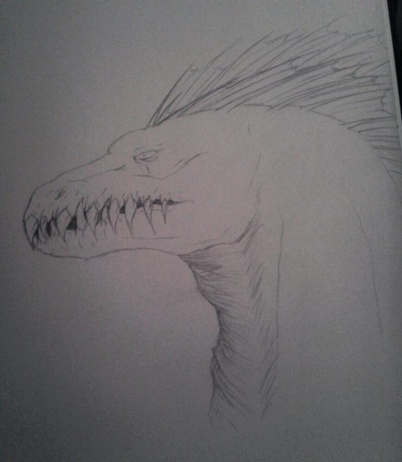 Nitara's Dragons  10552510