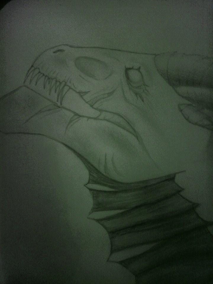 Nitara's Dragons  13953611