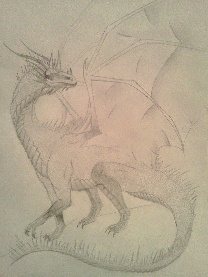 Nitara's Dragons  99994110