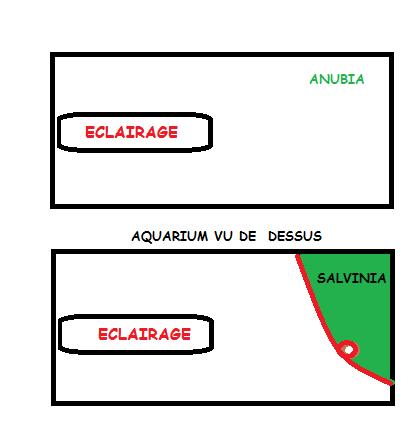 Délimiter les  espaces au niveau de la surface Sans_t10