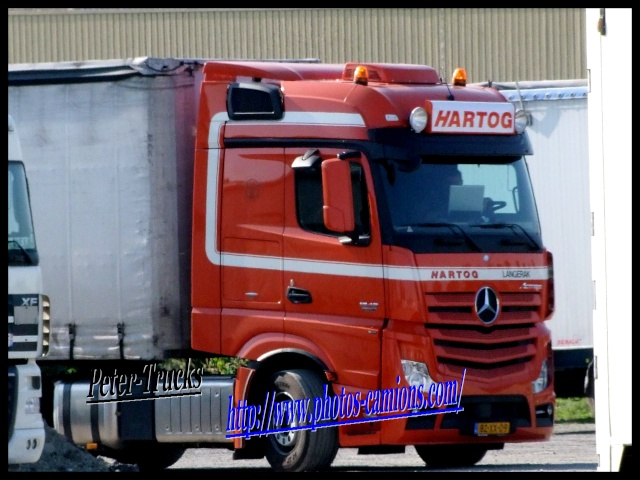 Hartog (Langerak) 02223