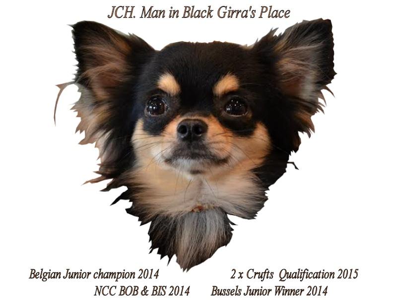 Man In Black Girra's Place Belgium Junior Champ Black_11