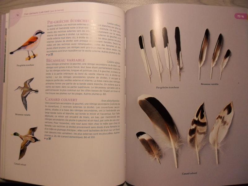 Les livres sur les plumes  Sam_5119