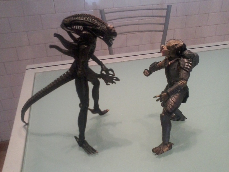 Action figure Alien vs Predator Foto-010