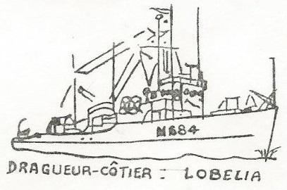 * LOBELIA (1955/1983) * 82-04_15