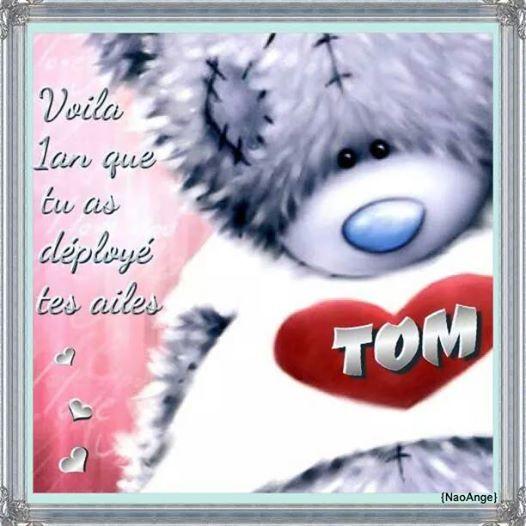 Histoire de Tom - Page 2 Doudou10