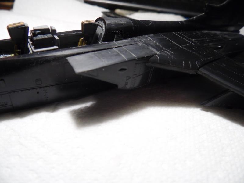 "Panavia Tornado "" Black Panther "" ( kit revell 1/72 ) - Page 3 Sam_0251"
