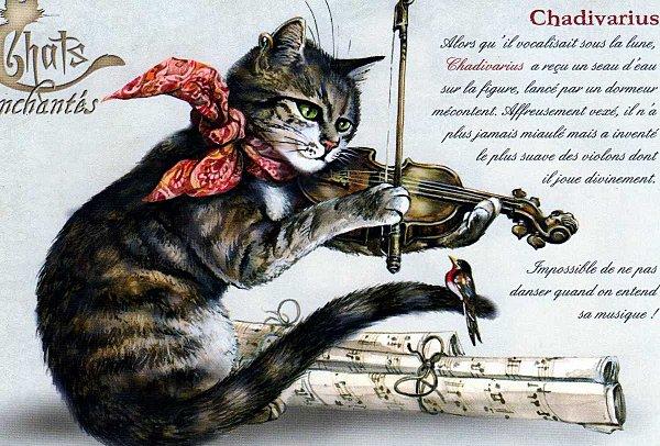 Chats Enchantés Chatdi10