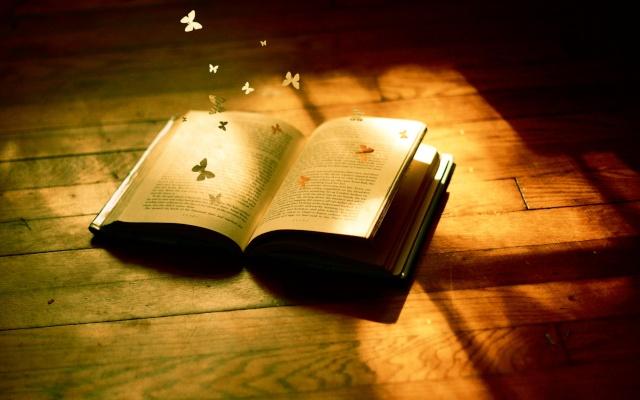 Bibliothèques et livres des songes Livres10